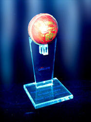 Acrylic Cricket Ball Memento