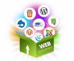 Dynamic Web Designing