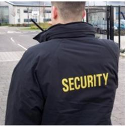 Parking Security Guard Service