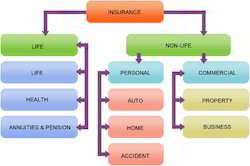 Insurance Software Service
