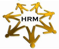 Online HR Management Software