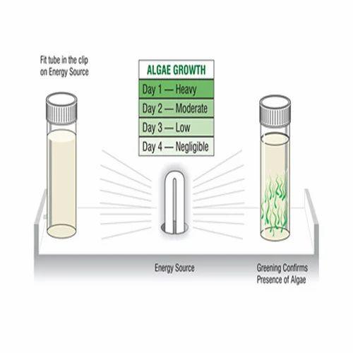 Bacteria- Algae Test Kit
