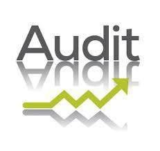 Vendor Audit and Business Ethics Compliance Audit Services in India