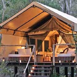 Safari Tent & Safari Tents - Suppliers u0026 Manufacturers in India