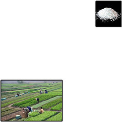 Humic Acid Powder for Agriculture