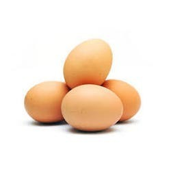 Egg And Poultry Testing Service
