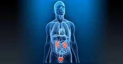 Urology Treatments