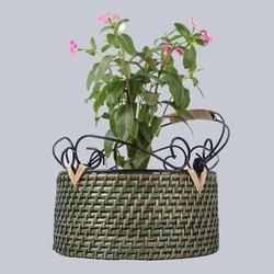 Cane Green Hanging Planter Basket