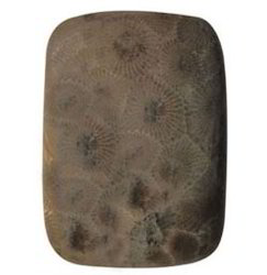 Stringaray Coral Stone