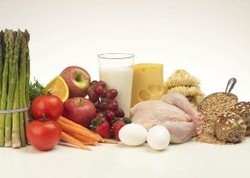 The Role Of Protein In The Diet