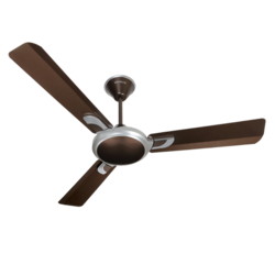 Areole Ceiling Fan (Havells)