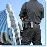 Executive Security Services