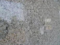 Salt And Pepper White Granite