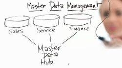 Master Data Management Service