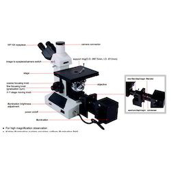 High Magnification Microscope