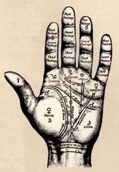 Astrology Palmistry