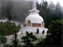 Darjling & Gangtok Volvo Package with Hotels
