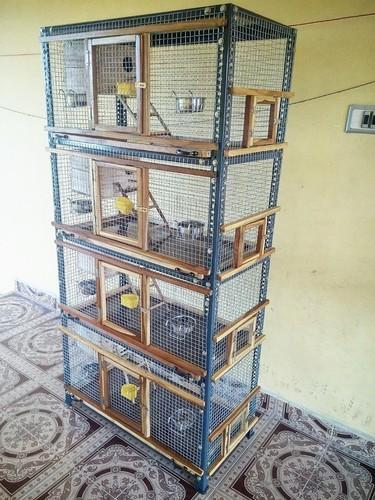 Extra Large Bird Cages Home Ideas