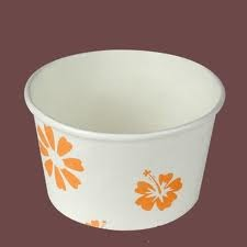 Paper Bowls/Paper Tubs