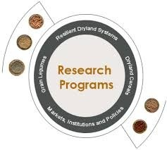 Research Programed Courses