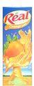Real Orange Nectar