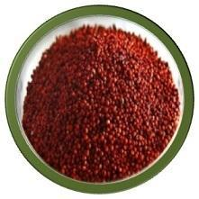 Millet Seed in Erode - Latest Price & Mandi Rates from ...