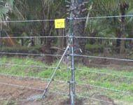 Solar Agri Fencing