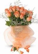 Cute Orange Roses
