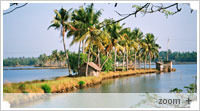 The Tranquil Backwaters and Lake Vembanad