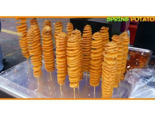 Spring Potato Machine Spring Potato Cutter Manufacturer