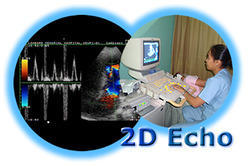2D Echo Reporting Software Solutions Offline