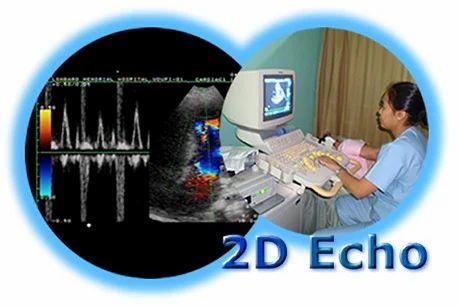 2D Echo Reporting Software Solutions Offline
