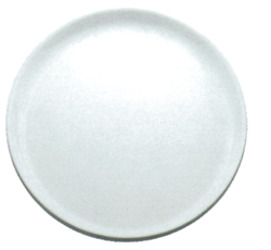 Poly Carbonate Dinner Plate