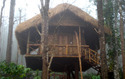 Luxury Bamboo Cottage Room Service