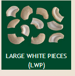 Large White Pieces (LWP) Cashew Nuts