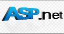 Asp.net Website Development