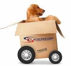 Pet Relocation Worldwide