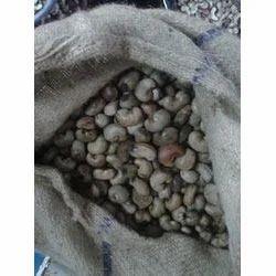 Benin Raw Cashew