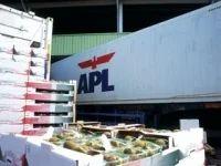 Reefer Cargo Handling