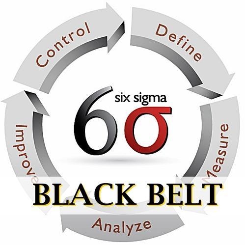open text and six sigma essay