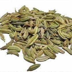 Foeniculum Vulgare Seeds