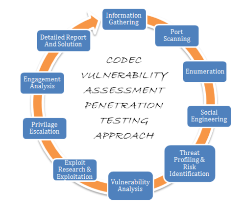 Apologise, but, vulnerability assessments and penetration testing apologise