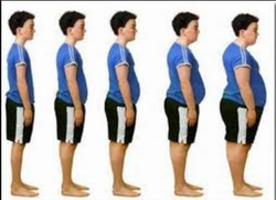 Weight Gains Center