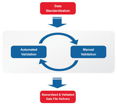 Data Validation Services