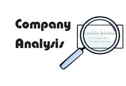 High Quality Company Analysis