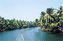 Backwater Package Tours