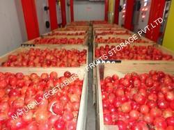 Fruit Cold Atmosphere Cold Storage