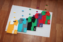 House Colours T-shirts