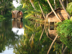 Backwater The Tranquil Waterways