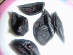 Kokam Seed